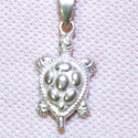 Silver Pendant Turtle