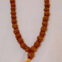 Rudraksha Kantha 54 Dana Special
